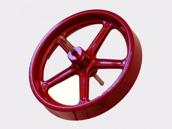 Flywheel D21
